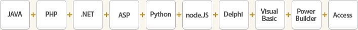 전자명세서 API 개발언어