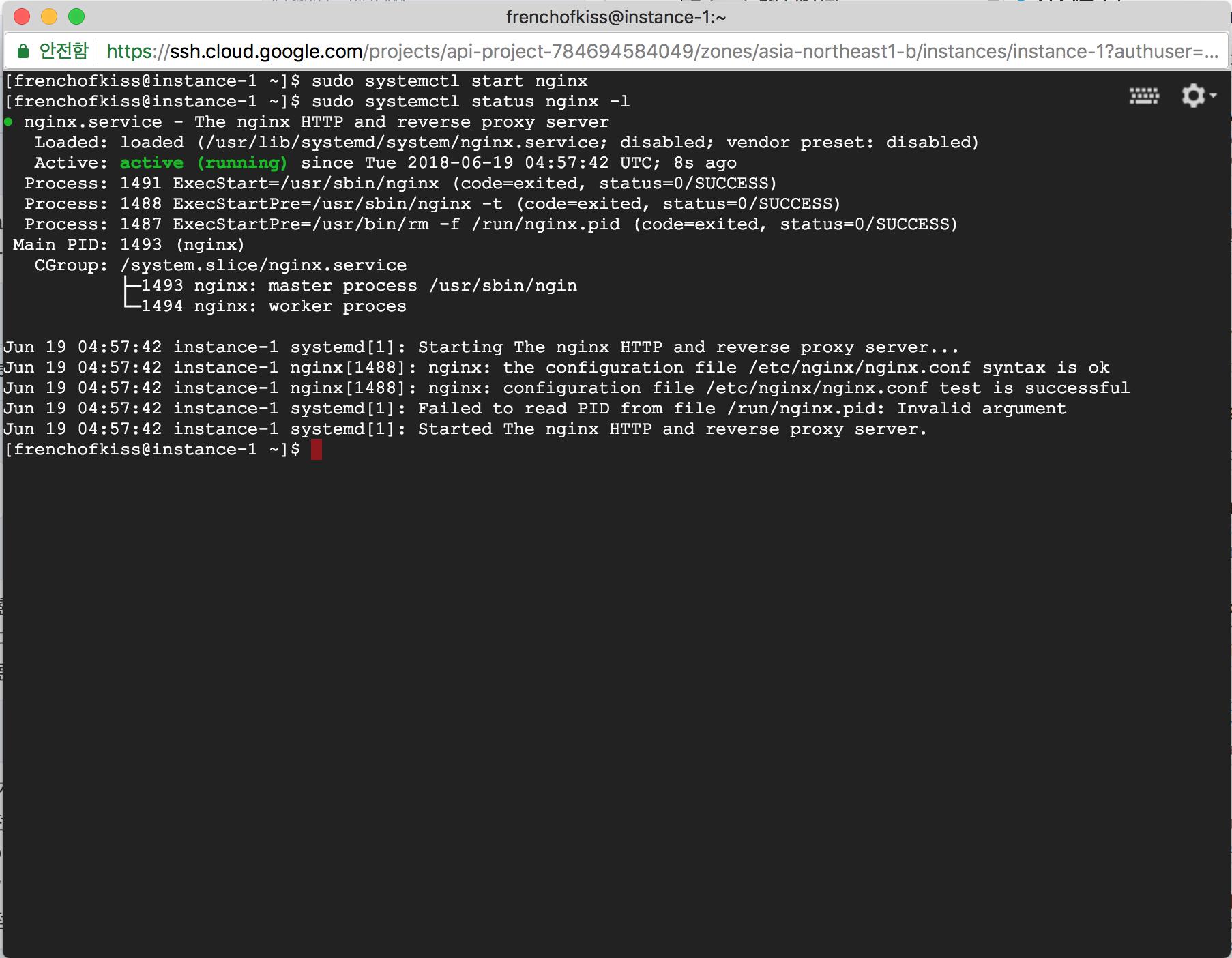 nginx start log
